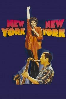 1977 New York New York (fra)  fra