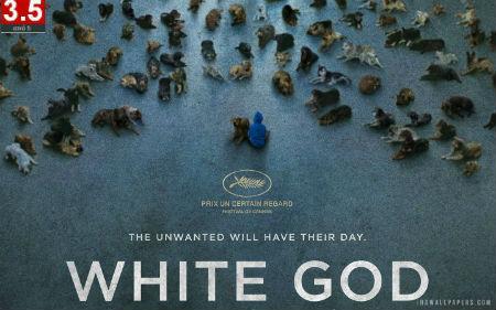 white_god_2014_movie-1440x900