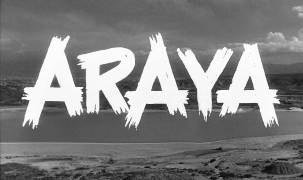 araya1