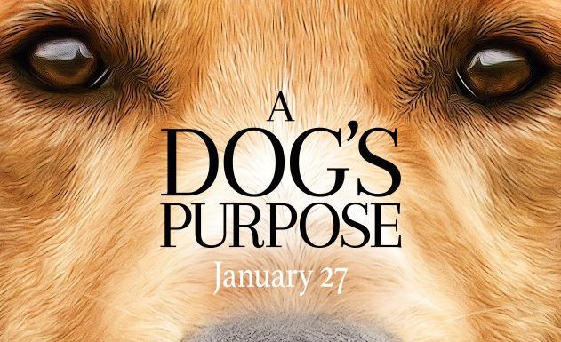 a-dogs-purpose-producer-says-dog-not-in-danger-social